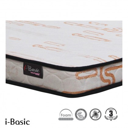 Goodnite (Single) 4.5 inch i-Basic Reborn Foam Plush Mattress